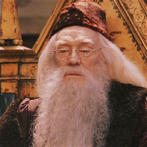 About Harry Potter: The Hogwarts Headmasters and Headmistress