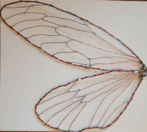 For bug theme bathroom-Fairy insect cicada wings LARGE